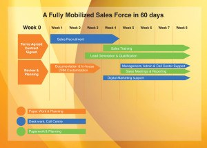 Fully Mobilized Sales Force in 8 weeks